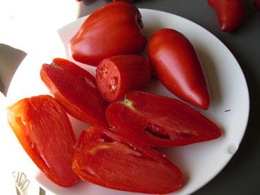 Lundi 20 août 2012 dans Le mot de la Ferme Tomate-Cornue-des-Andes